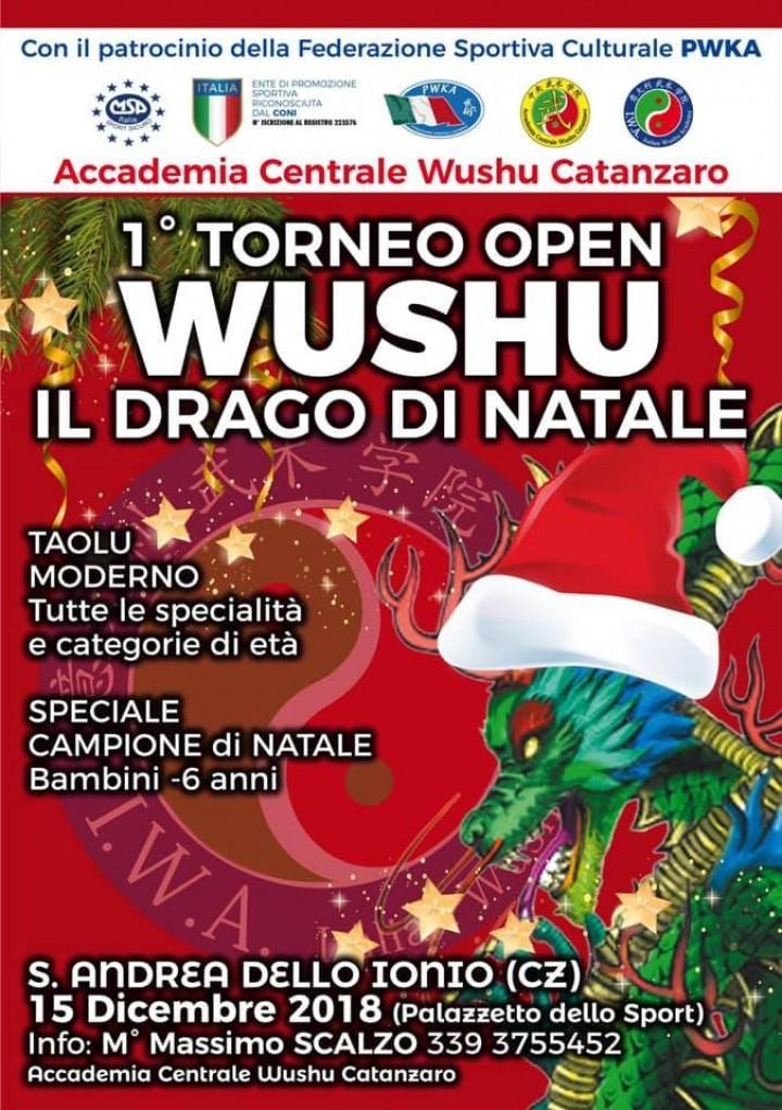 """1° Torneo Wushu Open """"Il Drago di Natale"""""""